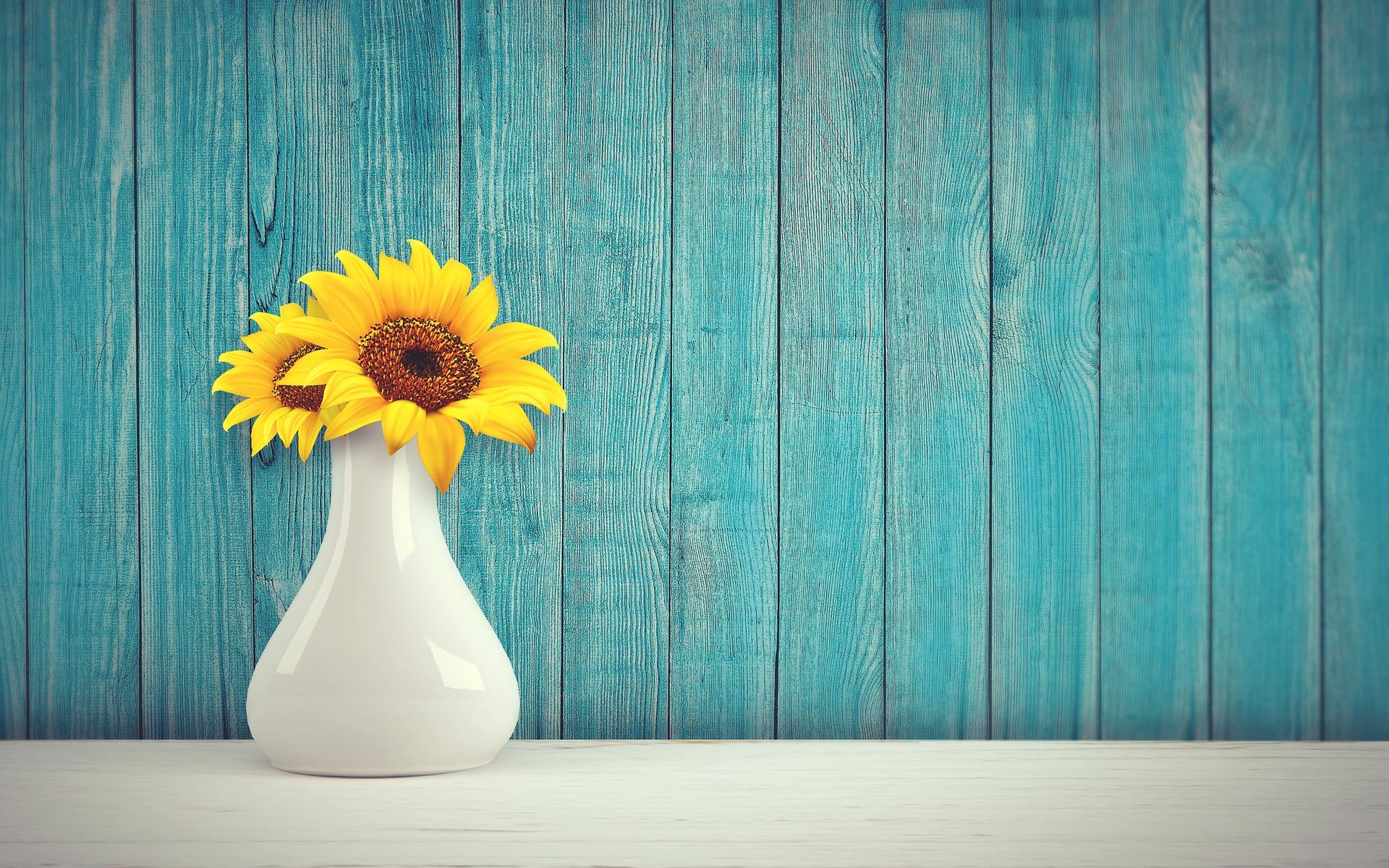 sunflower-3292932_1920